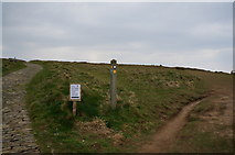 SW8469 : South West coast path at Pendarves Point by Ian S
