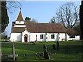 SP9007 : St Leonard's church, St Leonards by David Purchase