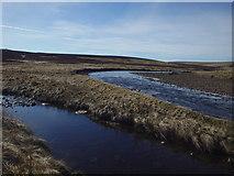 NY7633 : River Tees by Michael Graham