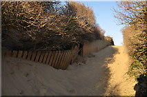 ST3050 : Burnham-on-Sea : Sandy Path by Lewis Clarke