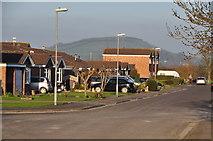 ST3050 : Burnham-on-Sea : Shelley Drive by Lewis Clarke