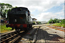SO6302 : Tank engine at Lydney Junction by John Winder