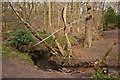 SJ6284 : Lumb Brook by Ian Greig
