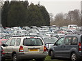 ST9701 : Kingston Lacy: overflow car park by Chris Downer