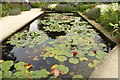 SP1742 : The water lily pond by Steve Daniels