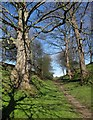 SE4253 : Footpath to Hunsingore by Derek Harper