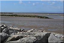 SD4464 : Bare shore, Morecambe Bay by David Martin