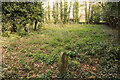 TF0343 : Burial Ground by Richard Croft