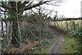 SH5280 : Anglesey Coast Path by N Chadwick