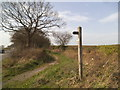 SO8392 : Staffs Way Signpost by Gordon Griffiths