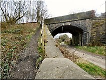 SJ9694 : Brookfold Bridge by Gerald England