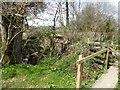 SY2195 : East Devon Way near Hamberhayne by David Smith