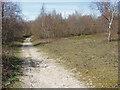 TQ0851 : Path, Sheepleas by Alan Hunt