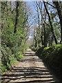 SX3580 : Tamar Valley Discovery Trail at Greystone Cottage by Derek Harper