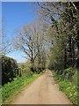 SX3678 : Lane north of Rezare by Derek Harper