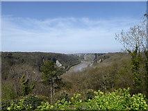 ST5673 : Avon Gorge North of Clifton Suspension Bridge by Steve Barnes