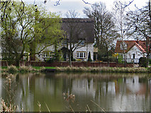 TA0816 : Village pond, Wootton, North Lincs by Paul Harrop
