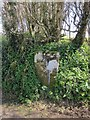 SX3780 : Boundary stone near Felldownhead by Derek Harper