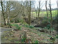 SD6527 : View to the bridge in Crow Wood by Greum