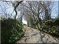 SX3378 : Lane to Penrest by Derek Harper