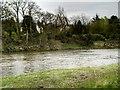 SD5930 : River Ribble at Brockholes by David Dixon