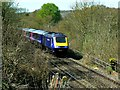 SU2363 : HST 125 (High Speed Train) approaching from the west, Savernake, Wiltshire by Brian Robert Marshall