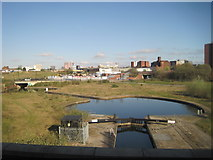 SJ8298 : View from a Manchester-Liverpool train - Canal basin by Nigel Thompson
