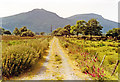 SH6142 : In Afon Glaslyn valley, south of Aberglaslyn, to Moel Ddu (1,811 ft.), 1992 by Ben Brooksbank