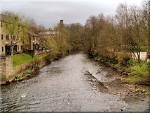 SE1039 : River Aire, Bingley by David Dixon