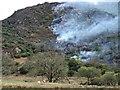 SH6049 : Gorse Fire by Richard Hoare