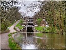 SE1039 : Bingley Five-Rise Locks by David Dixon