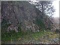 SD4775 : Two types of limestone, Trowbarrow LNR by Karl and Ali