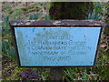 SD3598 : St Michael and All Angels, Hawkshead: churchyard (7) by Basher Eyre
