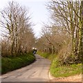 SX6252 : Narrow road to Westlake from Hollowcombe Cross by David Smith