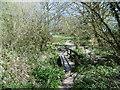 SZ4399 : Exbury, footbridge by Mike Faherty