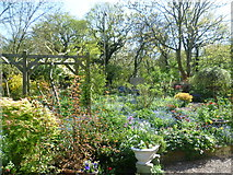 TQ4476 : In the organic garden at Woodlands Farm by Marathon