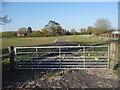 SP9518 : Field entrance, Ivinghoe Aston by David Howard