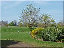 TQ1649 : Meadowbank Recreation Ground, Dorking by Alan Hunt