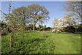 SJ6780 : The Rough at Arley Hall by Jeff Buck