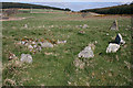 NO7191 : Eslie the Greater Recumbent Stone Circle (8) by Anne Burgess