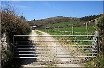 SX2773 : Track, Darley Farm by Derek Harper
