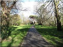 J3731 : Walkway in Islands Park. Newcastle by Eric Jones