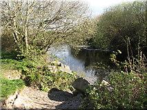 J3731 : The Shimna River below the New Bridge by Eric Jones