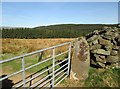 SE1371 : O/S  Bench  Mark  on  stone  gatepost by Martin Dawes