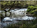 SX1984 : Inny near Tregulland by Derek Harper