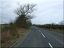 NZ2294 : Minor road towards Felton  by JThomas