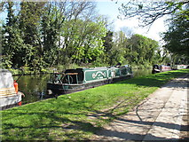 TQ2282 : Green Haven of Ilford - narrowboat on Paddington Arm, Grand Union Canal by David Hawgood