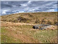 NY8604 : Sheepfold, Ravenseat Moor by Mick Garratt