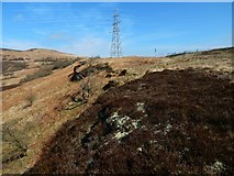 NS3678 : Line of sandstone outcrops by Lairich Rig