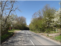 TM2971 : B1117 Vicarage Road, Laxfield by Geographer